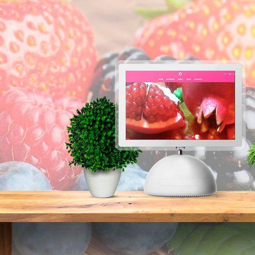 Ecommerce Vendita Piccoli Frutti