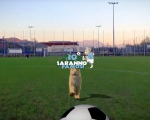 Video Torneo Saranno Famosi